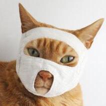 めだしマスク